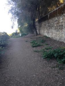 Original El Camino Real, San Juan Bautista