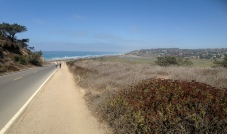 The Pacific Ocean at Torrey Pines State Park