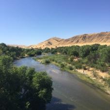 Salinas River at Bradley