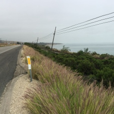 Highway 101 and Pacific Ocean, north of Goleta