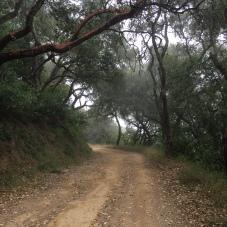 Refugio Road
